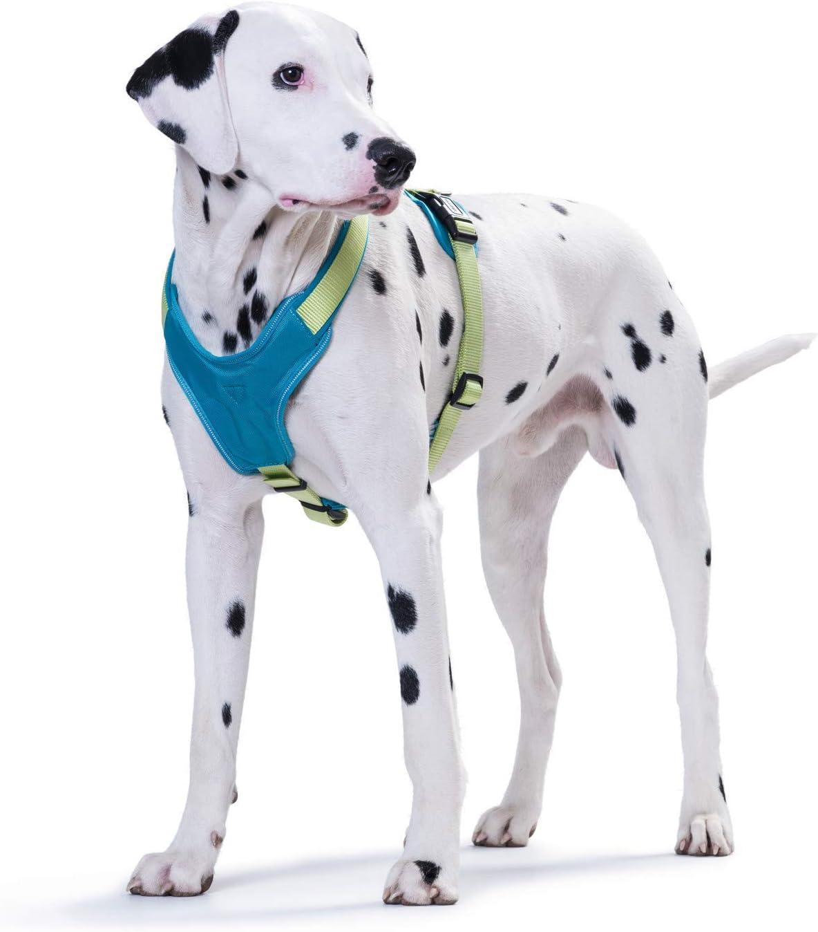 f/ür Sport und Freizeit HUNTER Neopren Geschirr f/ür Hunde mit weichem Neopren gepolstert aus Nylon