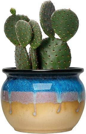 """/"""" Cactus Pot Planters 3.74 Inches Ceramic Ice Crack Small Cute Succulent Pots"""