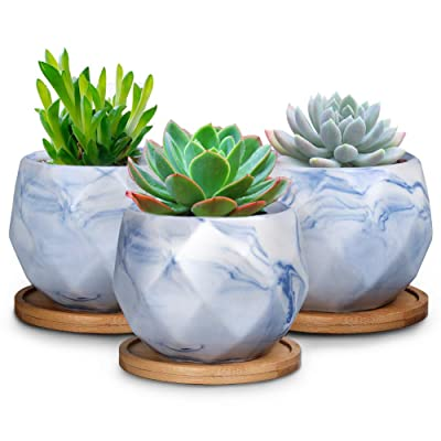 SQOWL 3.2 inches Blue Marble Ceramic Succulent Planter Pot Modern Cute Small Cactus Herb Flower Planters with Bamboo Tray Set of 3 : Garden & Outdoor