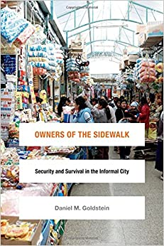 Owners of the Sidewalk: Security and Survival in the Informal City (Global Insecurities)