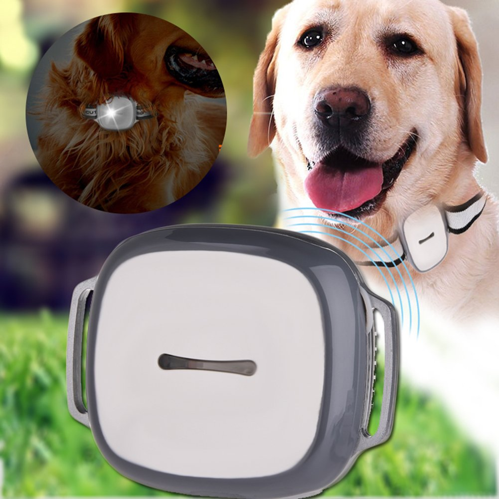 GPS Pet Tracker, Yunt GPS Monitoring with LED Light and Collar Smart Tracking Mini Waterproof for Dogs Cats