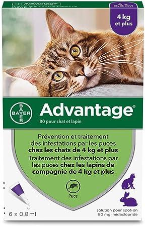 ADVANTAGE 80 - 6 pipettes antiparasitaires - Pour chat et lapin de 4kg et plus