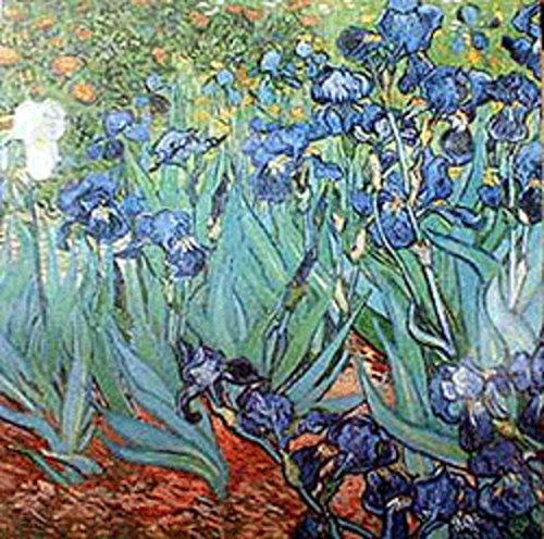 Battle Road Press Irises 500 Plus Piece Vincent Van Gogh Jigsaw Puzzle