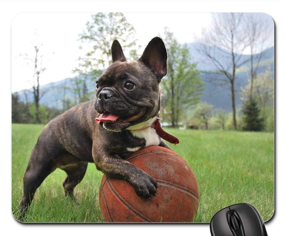 Amazoncom Gaming Mouse Pads Mouse Mat Puppy French