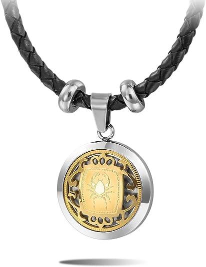 MeMeDIY Or dargent Deux Ton Acier Inoxydable Pendentif Collier Horoscope Signe Astrologique Zodiaque Zodiac Cordon Corde Cha/îne