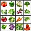 America's Favorite Vegetable Seeds All Heirloom Vegetable Seeds, Non Hybrid Variety, Non GMO in Heat Sealed Zipper Mylar Bag, Variety of Vegetable Seeds-Heirloom Seeds