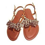 Douqu 1 Pair New Leopard Animal Print Ribbon Shoe Clips Retro Bows 3.15inch Vinitage Style