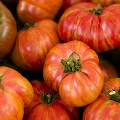 David's Garden Seeds Tomato Beefsteak Big Rainbow SL8371 (Multi) 25 Non-GMO, Heirloom Seeds : Garden & Outdoor
