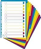 Exacompta - Réf 3812E - Un Paquet de 12 Intercalaires en Polypro Semi Opaque 30/100ème A4 Maxi Couleurs Assorties Vives