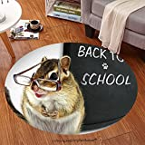 sophiehome Soft Carpet 110009243 Funny chipmunk in glasses, back to school concept Anti-skid Carpet Round 24 inches