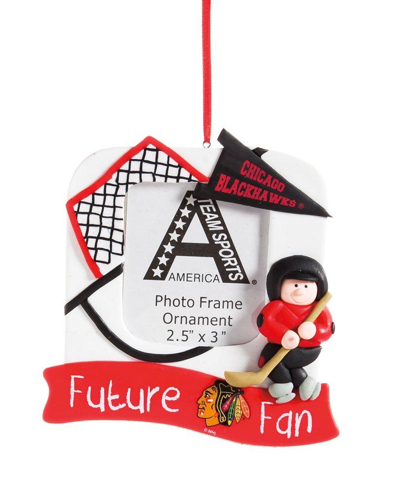 Chicago Blackhawks Rink Zukunft Fan Bilderrahmen Weihnachten ...