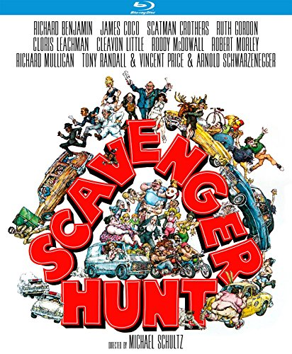 Scavenger Hunt [Blu-ray]