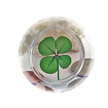 Amazoncom Real Four Leaf Clover Good Luck Pocket Token Coin