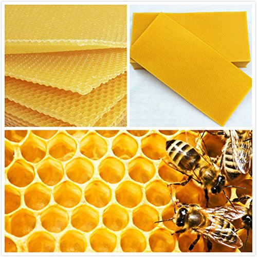 Janolia 30 Pcs Honeycomb Bee Wax Foundation, Beehive Wax Frames Base Sheets, for Beekeeping Apiculture Bee ()