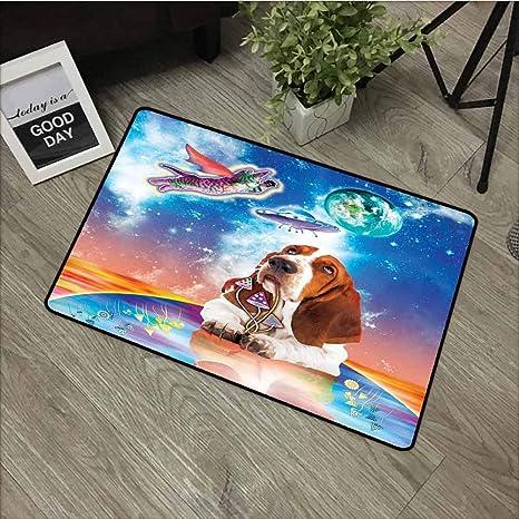 Amazon.com: Mkedci - Felpudo con diseño de gato volador ...