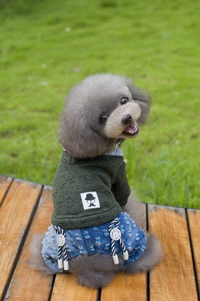 Cappotto per animali domestici Vestiti vestiti per cani vestiti per cani Versione coreana del maglione a quattro zampe (colore  verde, Taglia  S) Vestiti per cani ( colore   verde , Dimensione   S )