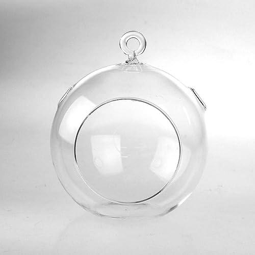 Clear Glass Globe Terrarium Air Plant Candle Holder