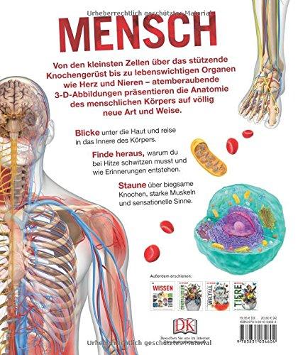 Wissen - Mensch: Der Körper in spektakulären Bildern: Amazon.de: Bücher
