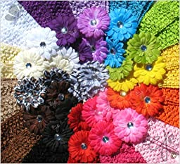 Ema Jane 28 Assorted \'Ema Jane\' Boutique Quality Small Gerber Daisy (Double Matching Colors, 2 Sets of 14) Flower Hair Clip Bows - Infants, Baby, Toddlers, Youth, Girls - Hair Clip Attaches to Headbands, Beanies, or Hair (Headbands Not Included)