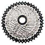 CYSKY 10 Speed Cassette 11-42 MTB Cassette 10 Speed Fit for Mountain Bike, Road Bicycle, MTB, BMX, SRAM Shimano Sunrace 10 Speed Freehub Body (Light Weight)