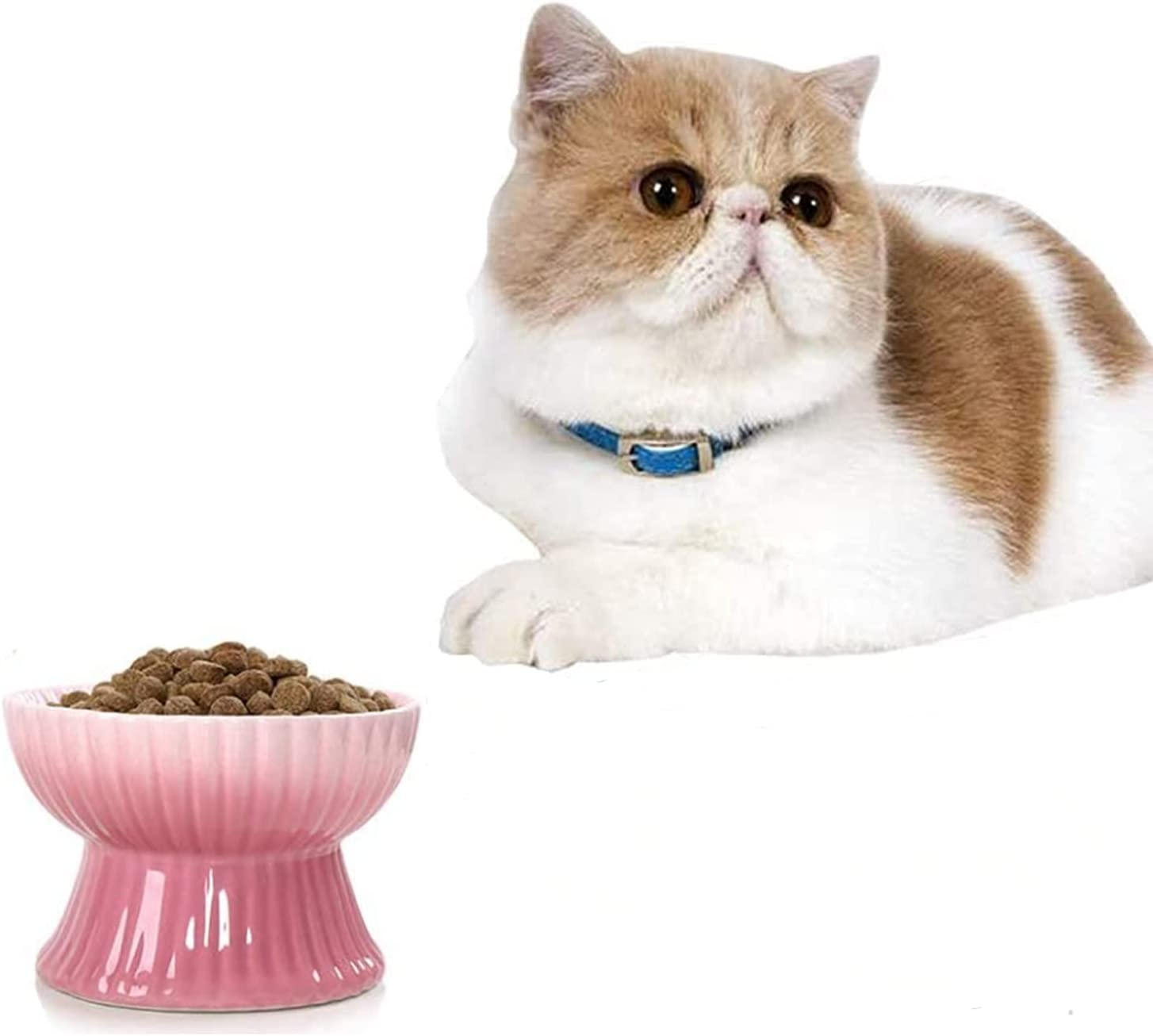 Raised Cat Food Bowls, Elevated Ceramic Cat Food Bowls Small Dog Dish Pet Food Bowls for Eating Stress Free, Anti Vomiting (Pink)
