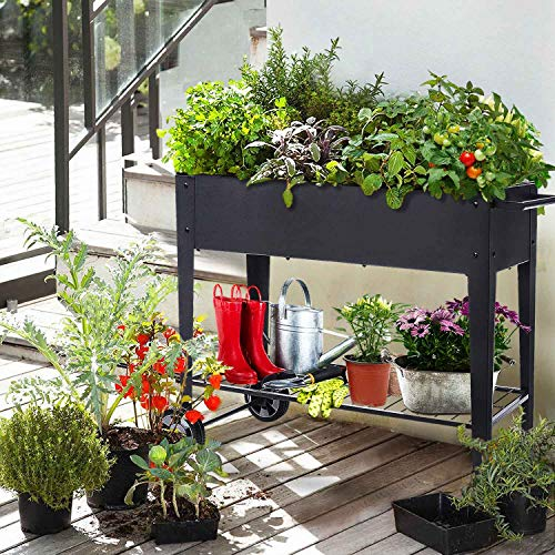 Raised planter box on wheels