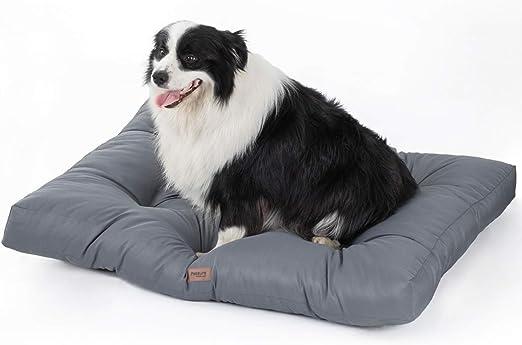 Bedsure Cama para Perros Pequeño Impermeable - Colchón Perro Lavable Suave, M 76x50x10 cm, Gris: Amazon.es: Productos para mascotas