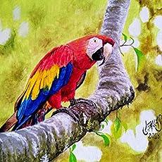 Pintura en óleo Guacamaya escarlata original