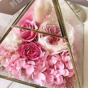 FYYDNZA Immortal Flower 520 Gift Glass Cover Gift Lamp Girlfriend Birthday,Pink (Gift Box) 39