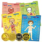 BEST LEARNING i-Poster My Body - Educational Anatomy Talking Toy to Learn Body Parts, Organs, Muscles and Bones