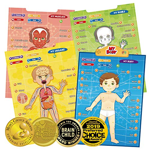 BEST LEARNING i-Poster My Body - Interactive Educational Human Anatomy Talking Game Toy System to Learn Body Parts, Organs, Muscles and Bones for Kids Aged 5 to 12 (Human Body Game)