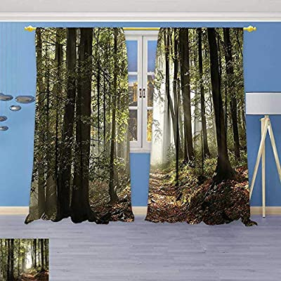 Design Print Thermal Insulated Blackout Curtain Decor Collection Autumnal Forest Pathway in The Mountains with Mist in The Distance for Living Room