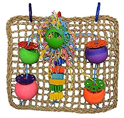 Super Bird Creations Seagrass Foraging Wall Toy for Birds from Super Bird Creations