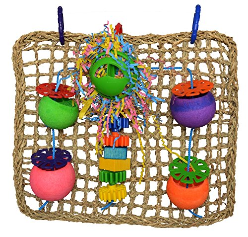 61UXqH4XUSL - Super Bird Creations Seagrass Foraging Wall Toy for Birds