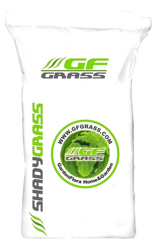 Rasensamen Schattenrasen GF Shady Grass 30 kg Grassamen Rasensaat