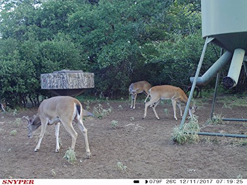 The General 3G Game Camera by Snyper Hunting Products (12MP, Viewing LCD, Connected by AT&T) by Snyper Hunting Products (Image #5)