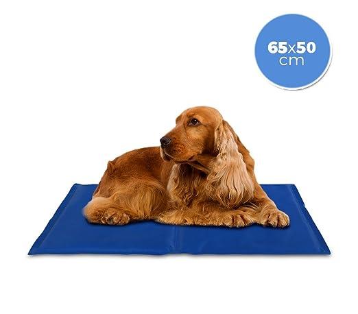 MEDIA WAVE store ® 37101 Cojín refrigerante 65x50 cm con gel refrescante para perros medianos