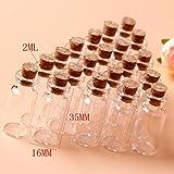 Gaohou Ensemble de 20 flacons en verre avec bouchon de liège 16 x 35 mm 2 ml
