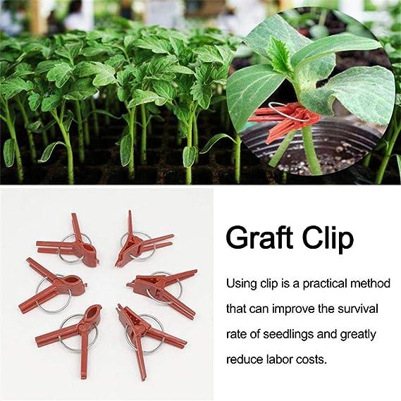 Sujetador de clips de injerto de planta de granja de jardín 100PCS ...