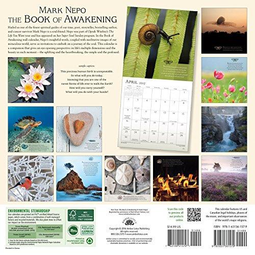 The Book of Awakening 2017 Wall Calendar