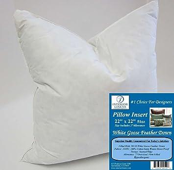 22x22 Pillow Insert Interesting Amazon 60 X 60 60oz Pillow Insert 6060 White Goose Feather