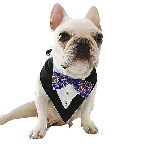 Gato Formal Corbata De Lazo For Perro Pañuelo Escalable For Perros ...