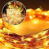 CREALITE Fairy String Lights 6.6ft(2m) 3AA Battery Powered Micro Wire,20 LED Waterproof Decorative Lights for Christmas,Party,Valentines Day,Wedding,Garden,Festival (WarmWhite)(PACK OF 6)
