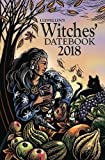 img - for Llewellyn's 2018 Witches' Datebook book / textbook / text book