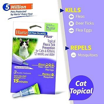 Amazon.com: ley-hartz ultraguard Plus Gotas para gatos: Mascotas