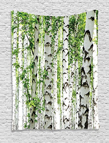Ambesonne Woodland Decor Tapestry Wall Hanging, Birch Trees in The Forest Summertime Wildlife Nature Themed Decorating Picture, Bedroom Living Room Dorm Decor, 60 W x 80 L inches, White Green Review