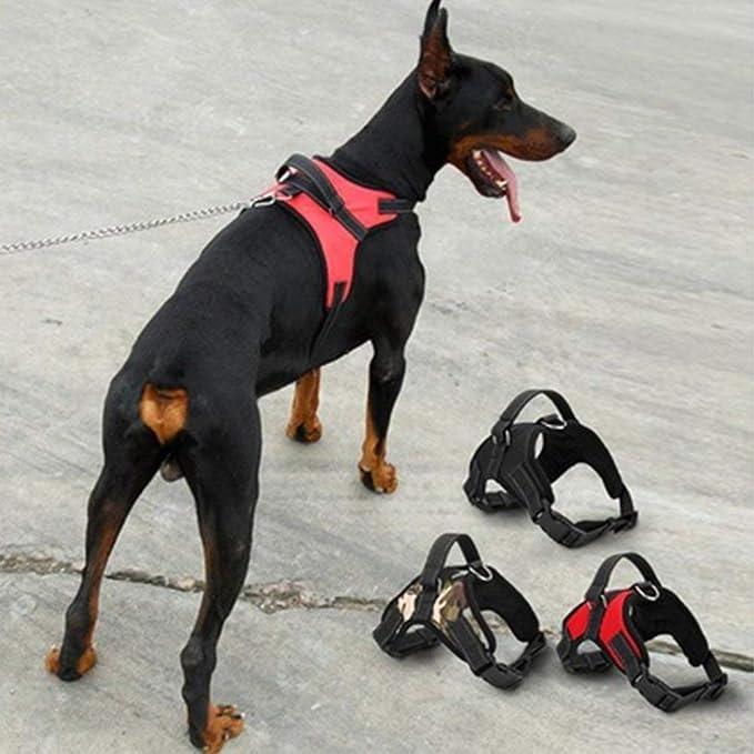 Seesau. Arnés ajustable para perro, malla transpirable, cómodo ...
