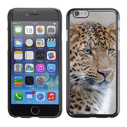 "Premio Sottile Slim Cassa Custodia Case Cover Shell // F00031072 Leopard closeup // Apple iPhone 6 6S 6G PLUS 5.5"""