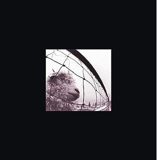 Pearl jam vs. / vitalogy deluxe edition 3x 5'' cd 3.
