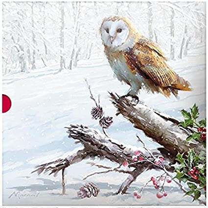 Wildlife Christmas Cards.Christmas Cards Ph Xba0028 Winter Wildlife From The